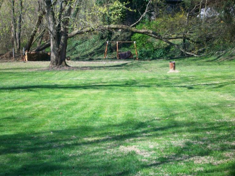 Show me your backyard!-004.jpg
