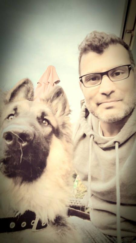 What Type Of German Shepherd Do I Have German Shepherd