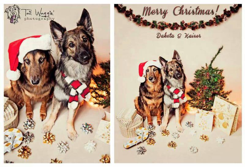 Merry christmas!-1387208975864.jpg