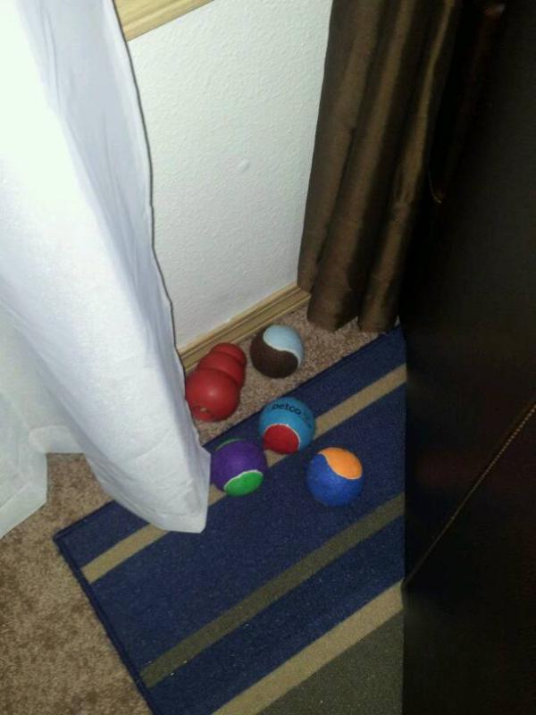 Sorting Toys?!-1388788124326.jpg