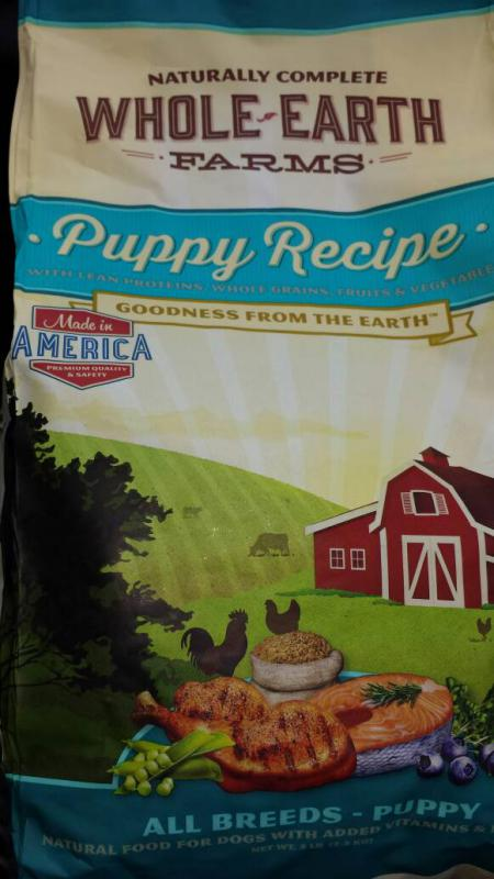 Best gsd puppy food??-1391543080620.jpg