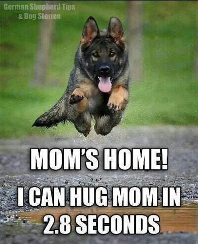 For us FurBaby Mommies :)-1394731887379.jpg
