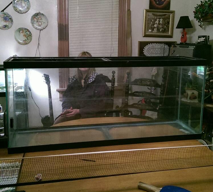 New turtle tank!-1396976270120.jpg