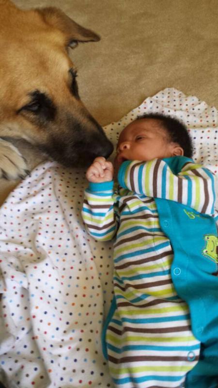 Shiggs meets baby!-1403207165629.jpg