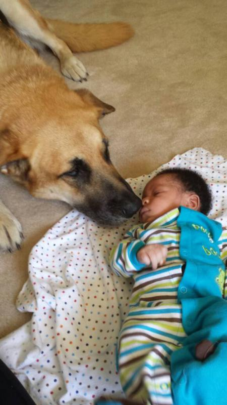 Shiggs meets baby!-1403207178673.jpg