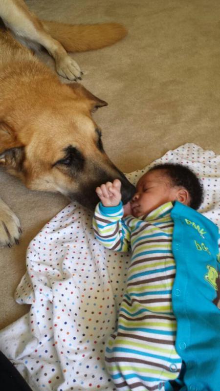 Shiggs meets baby!-1403207193050.jpg