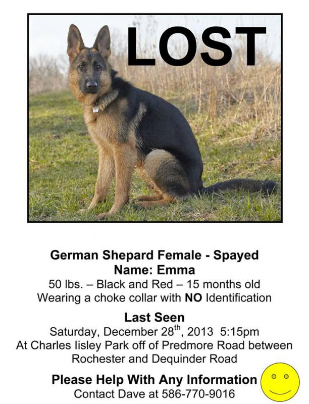 Lost in Oakland County Michigan-1555369_517577165006329_1812752019_n.jpg