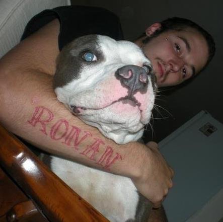 'Heart dog'-16907_10151299336642495_1540125991_n.jpg