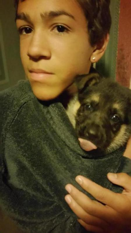 Lazy eye pup??-20150617_000514_1435312804201.jpg