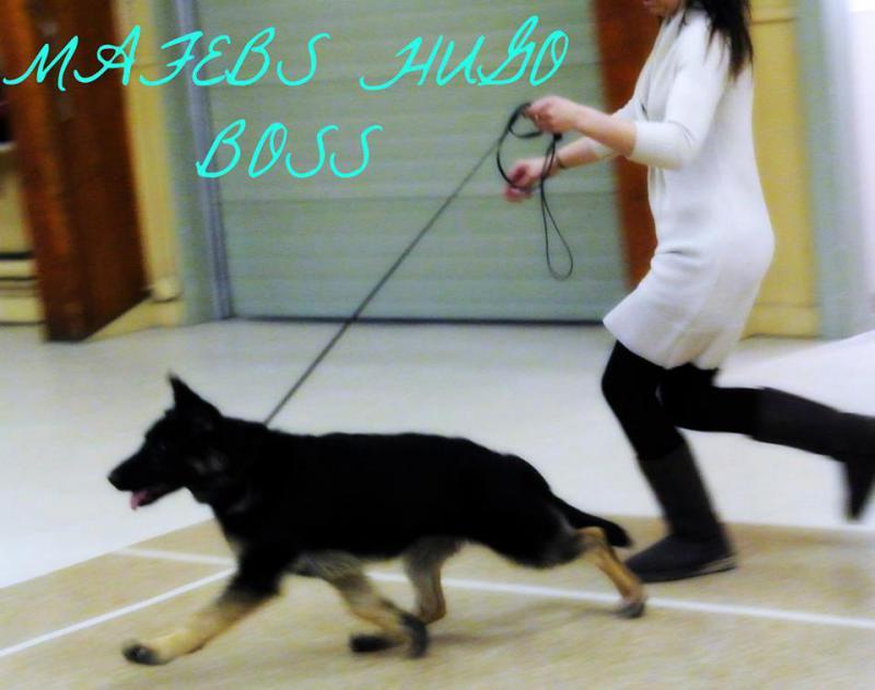 Hugo Boss-524539_10152032184731229_177159616_n.jpg