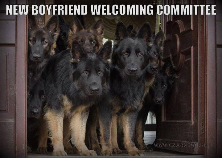 Welcome home meme funny pictures.