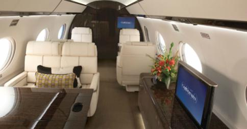 New here...not sure if our new guy is purebread, but we love him either way!-elite-daily-gulfstream-g650-485x255.jpg