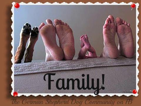 O.K. This has to make you Smile :)-family.jpg