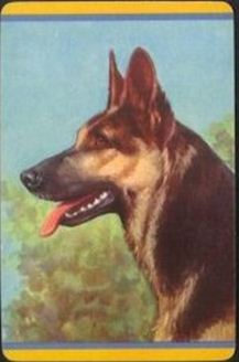 Do you have GSD apparel or items?-gsd-playing-cards-1938.jpg