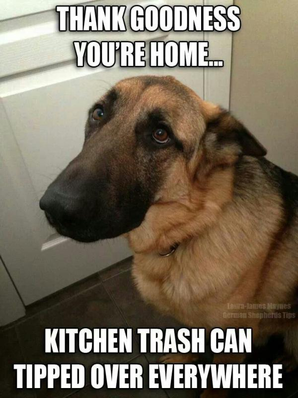 To the hills-gsd-trash-can.jpg