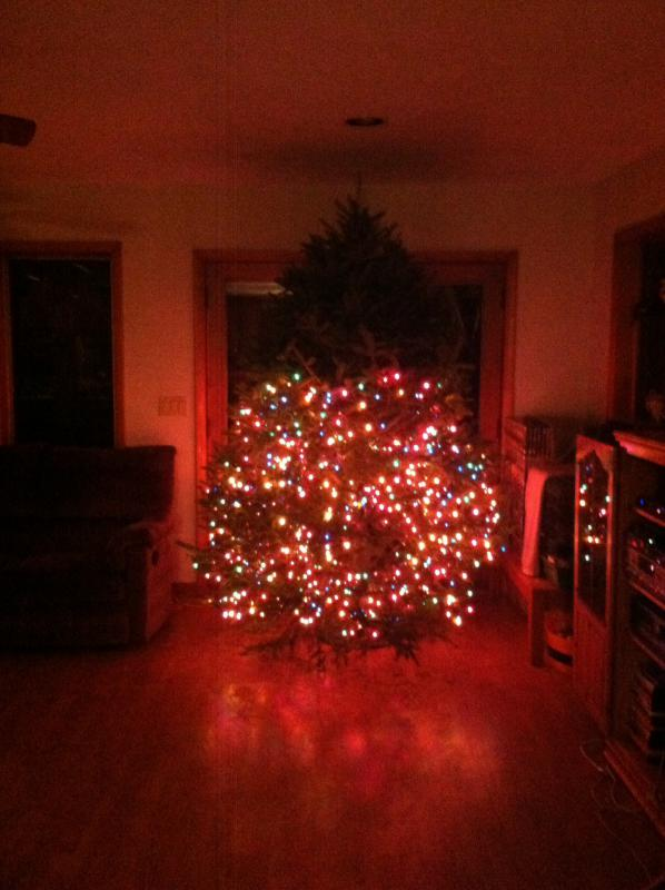 It's that time of the year again! Show me your tree!-image.jpg