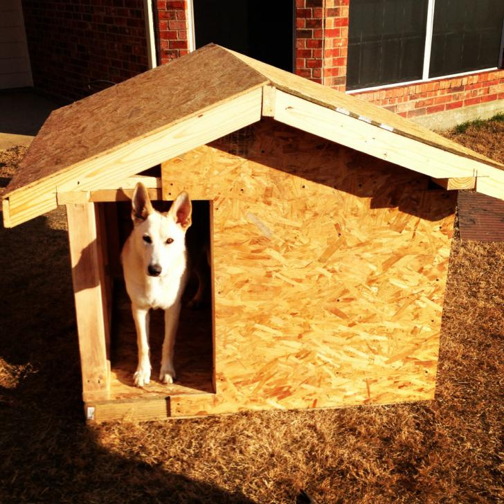 Dog house I built for girl Chaucey, pics!-imageuploadedbypetguide1387342864.925878.jpg