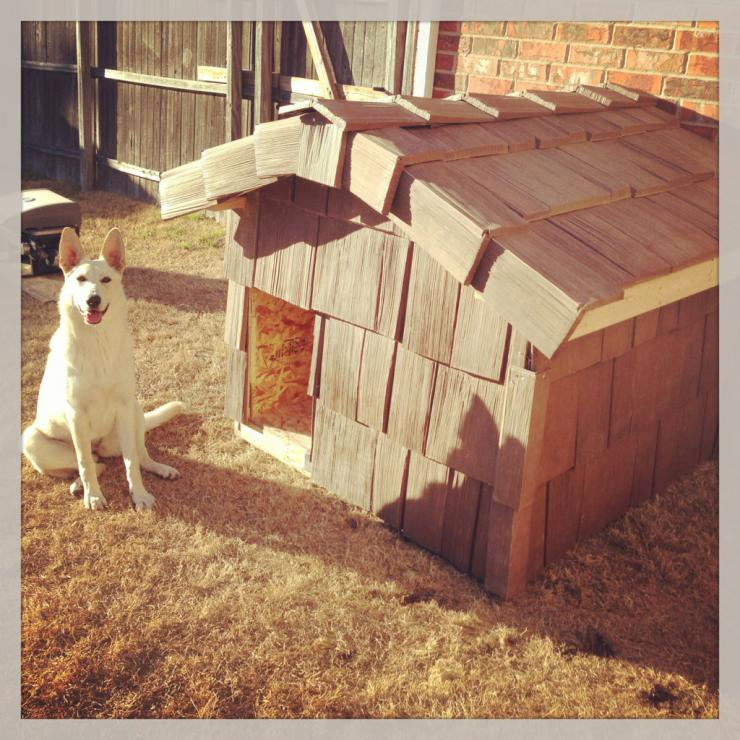 Dog house I built for girl Chaucey, pics!-imageuploadedbypetguide1387342908.228939.jpg