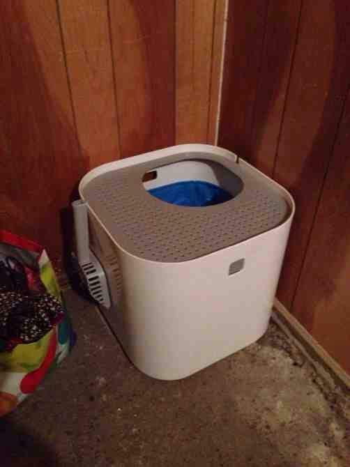 disgusting litter box-imageuploadedbypg-free1389832891.852809.jpg