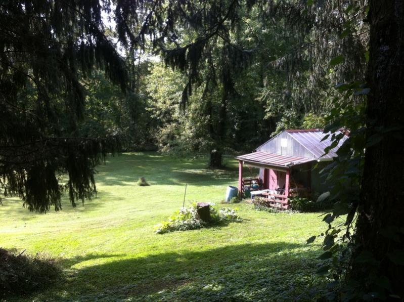 Show me your backyard!-img_0017.jpg