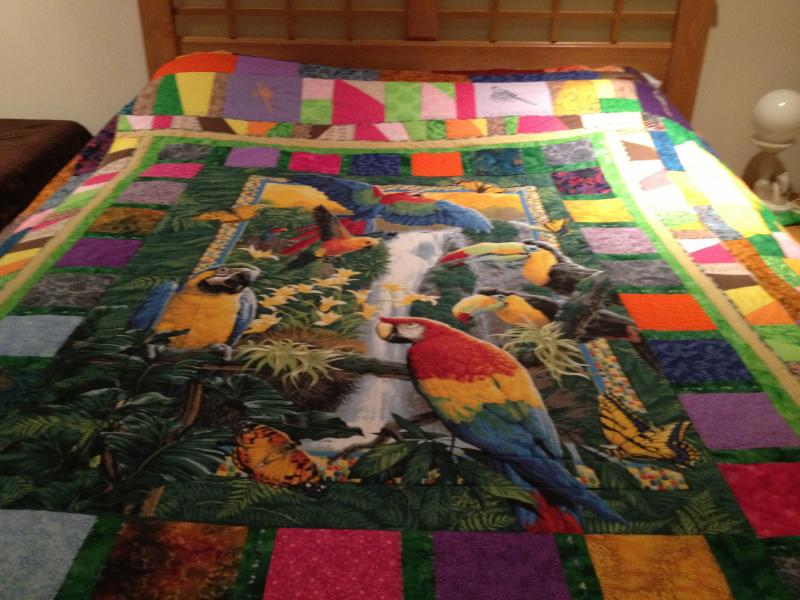 Parrot Quilt-img_0241-1-.jpg