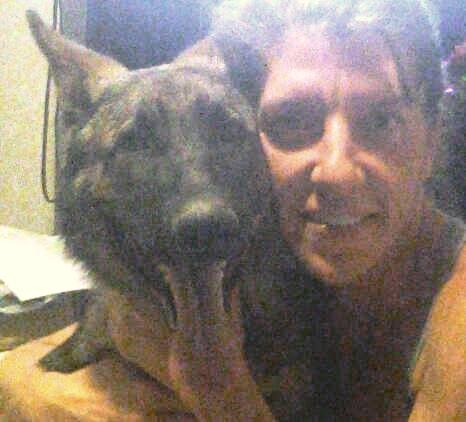 Please be advised that taking a selfie with your GSD....-img_20140712_214636-1.jpg