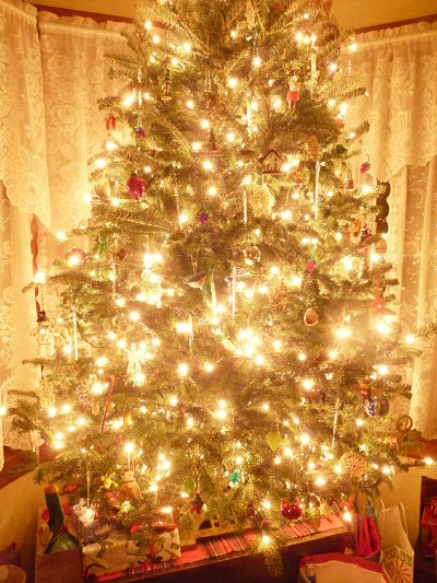 Show me your Christmas tree!-p1050501_opt.jpg