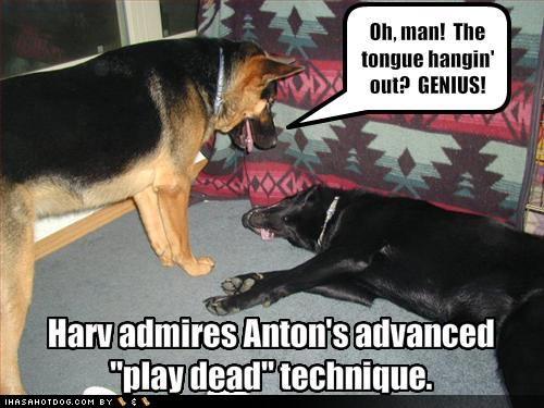 Funnies-playdead.jpg