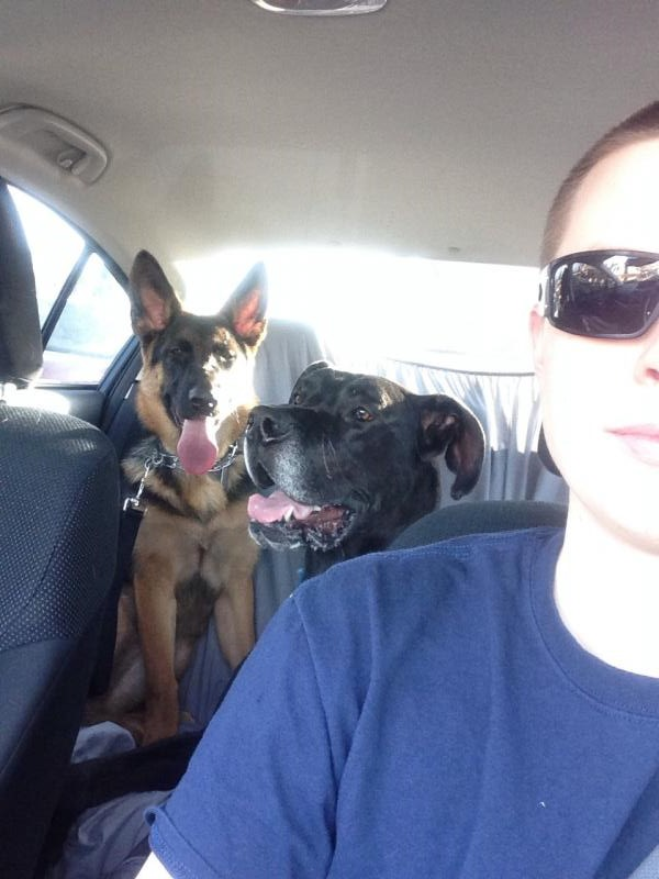 Trip to the dog park  :)-ride.jpg