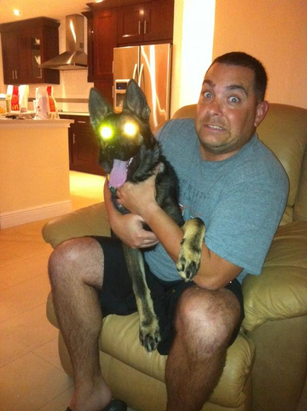 "Let's see those ""laser eyes"" pics-rocco-4-months-072.jpg"