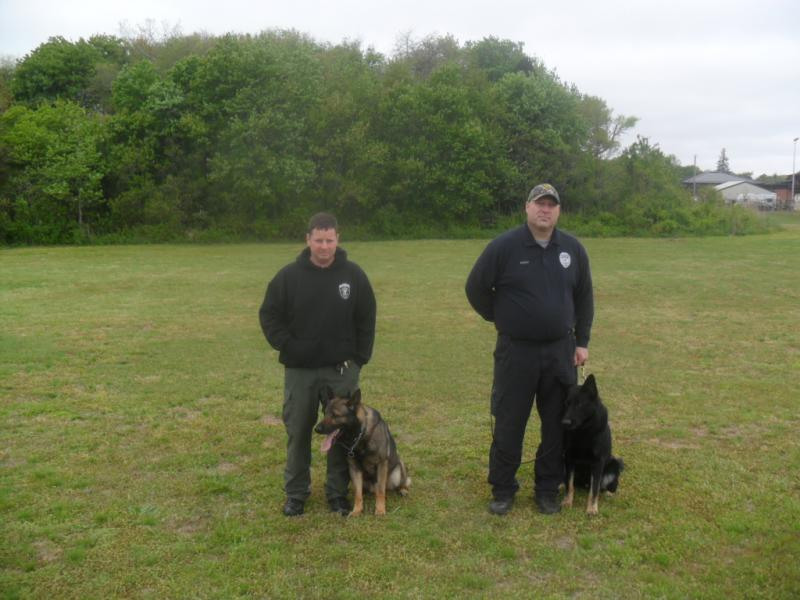 K9 Cyras, K9 Chris-sam_1621.jpg