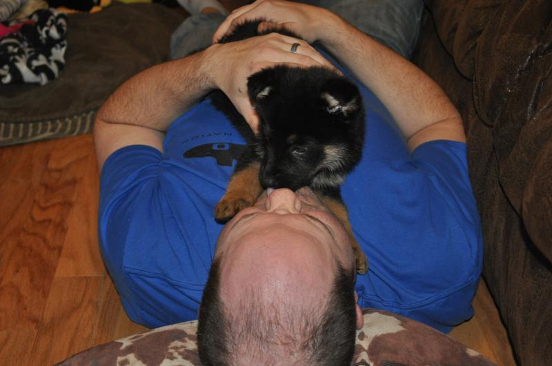 New Shadow dog-shadow-8-weeks-015.jpg