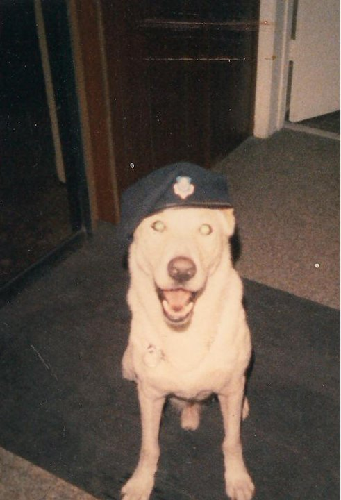 Patrick AFB MWD 1988-shilo.jpg