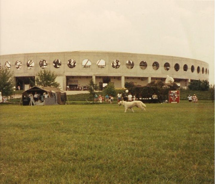 Patrick AFB MWD 1988-shilo-sea-world.jpg