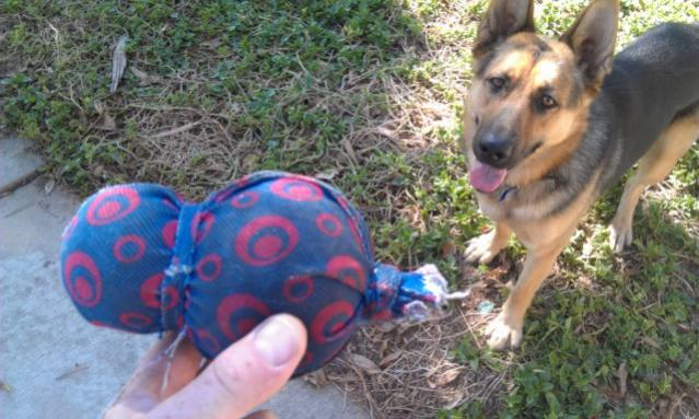 What's Your Dog's FAVORITE Toy?!-squeaky.jpg