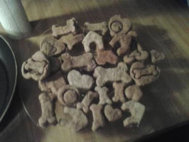 doggy TREATS!-tn.jpg