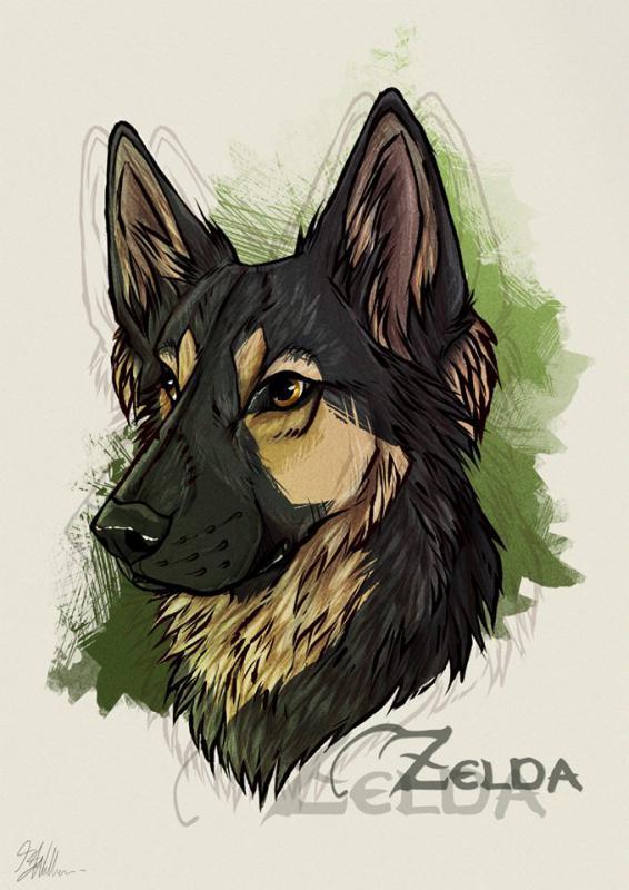 Zelda Portrait! :)-zelda-portrait-arkaymajor.jpg