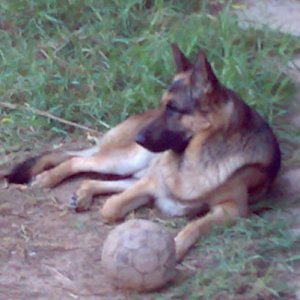 Richie 01012007 On the ball