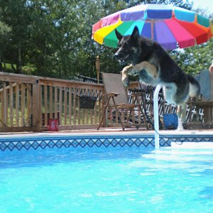 Mike is an enthusiastic diver....too bad he can't swim!